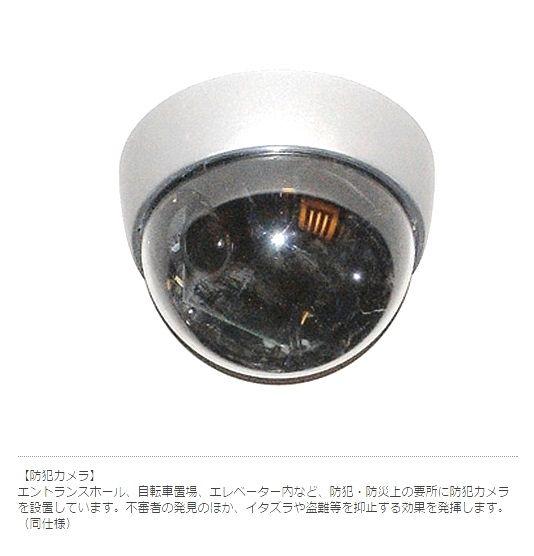 監視カメラがあり、一人暮らしの女性でも安心です