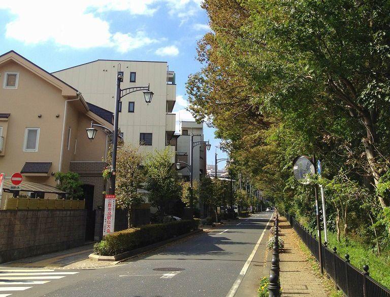 三鷹と吉祥寺を結ぶ、一本道。穏やかな雰囲気が最高です。