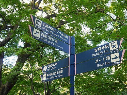 お散歩、ボート、ジブリ、動物園・・・井の頭公園は飽きることを知りません。